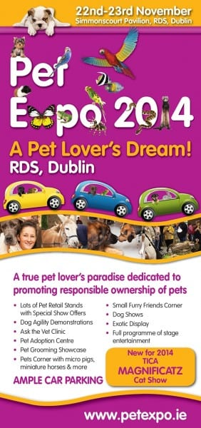 Pet Expo Poster
