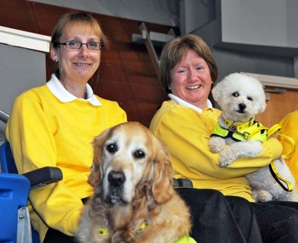 Service Dogs of Ireland Seminar - Poppy and Benji
