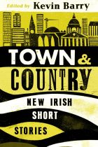 Image result for Town and country: New Irish Short Stories