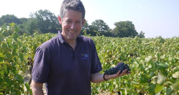 Kildare-based winemaker is Simon Tyrrell has been making wine in the Rhône valley for five years now.