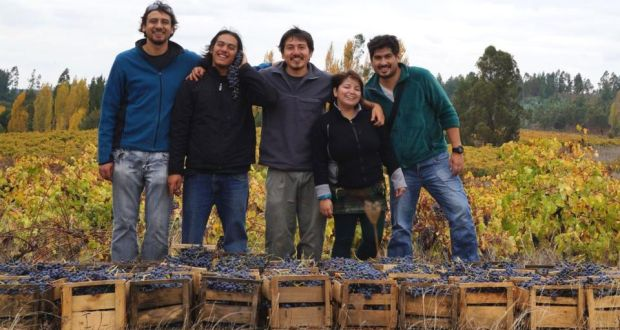 Winemaker Roberto Henriques with colleagues in the Itata valley in Chile.