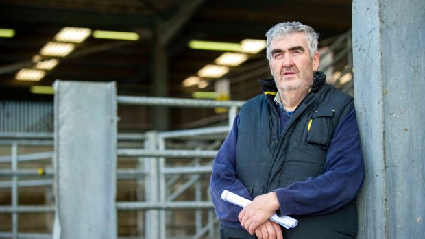 Farmer Tom O'Keeffe from Castletownroche pictured at the sheep auction at Macroom, Co Cork. Photograph: Daragh Mc Sweeney/Provision