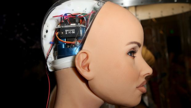 A Harmony RealDoll customizable sex robot. Photograph: Gabe Ginsberg/WireImage