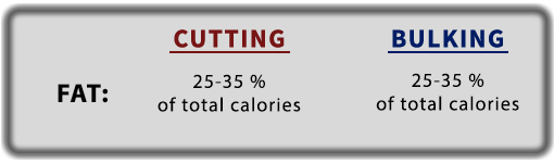 fat-intake-recommendations-dieting-guide