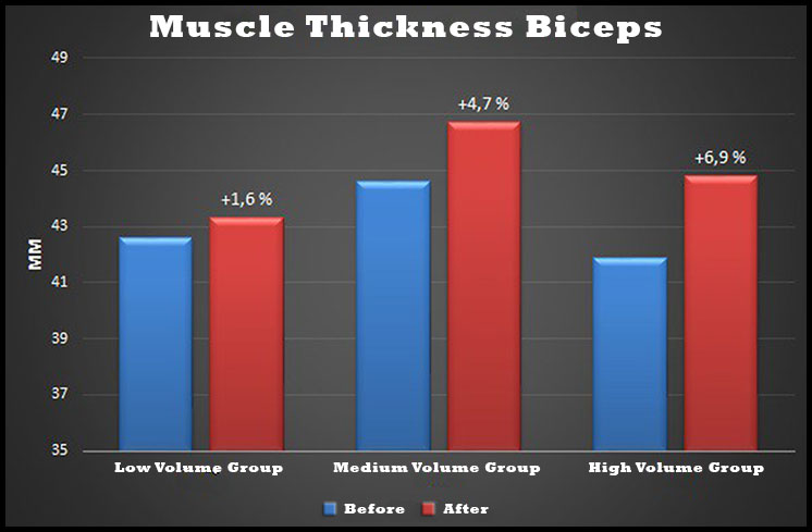 biceps-thickness-study