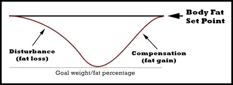 body-fat-set-point