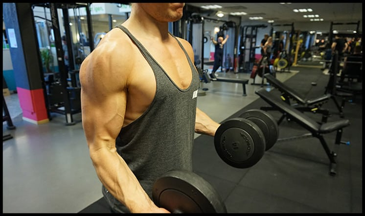isolation-exercises-muscle-growth