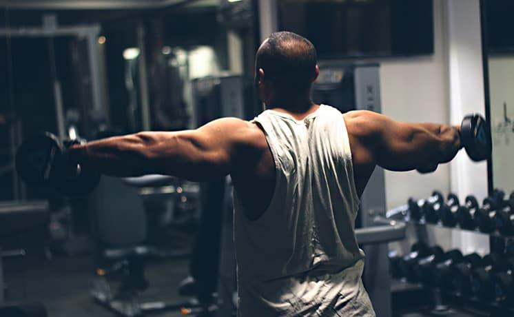 Full body vs split when bulking what's best for mass
