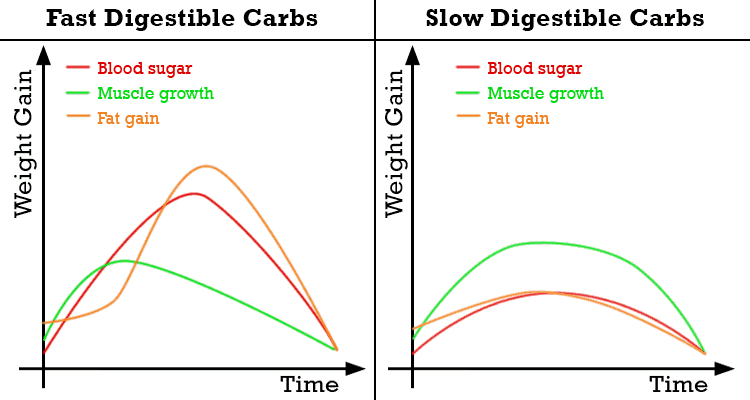 fast-vs-slow-digestible-carbs