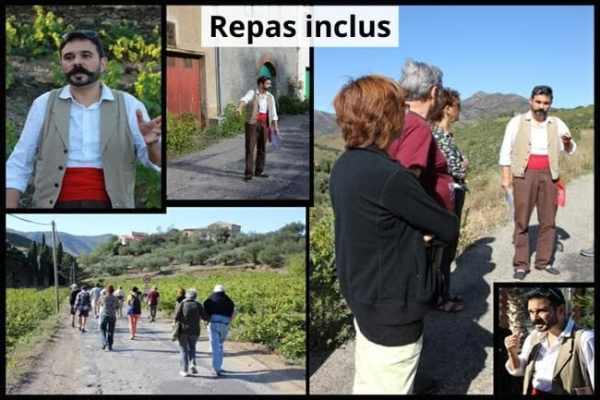 offre repas guide banyuls