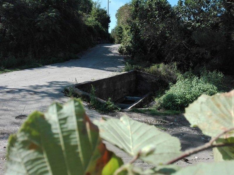 La fontana della Festola