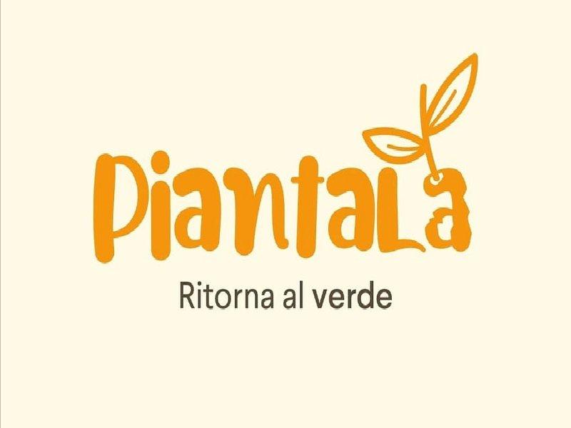 """""""Piantala"""": il duplice imperativo dei giovani calitrani"""