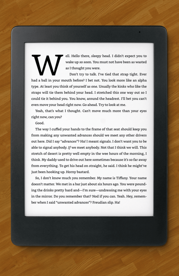BECAUSE REASONS on an ereader.