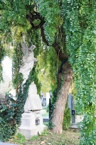 zentralfriedhof statue wien