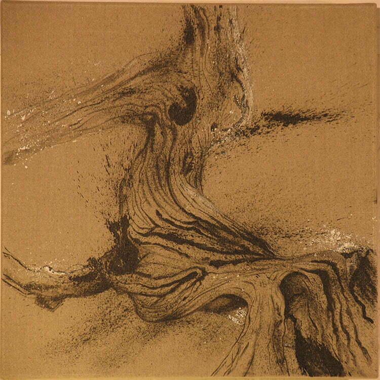 Souche de cade - N°3 - 50x50cm - encre de Chine sur toile - 2009 - 150 €.