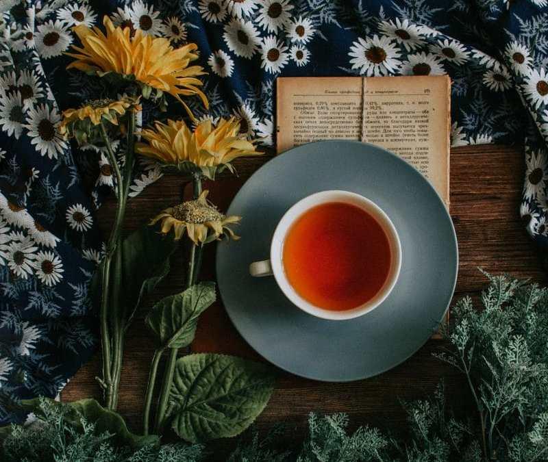 Thé vert , Thé noir : tous leurs bienfaits !