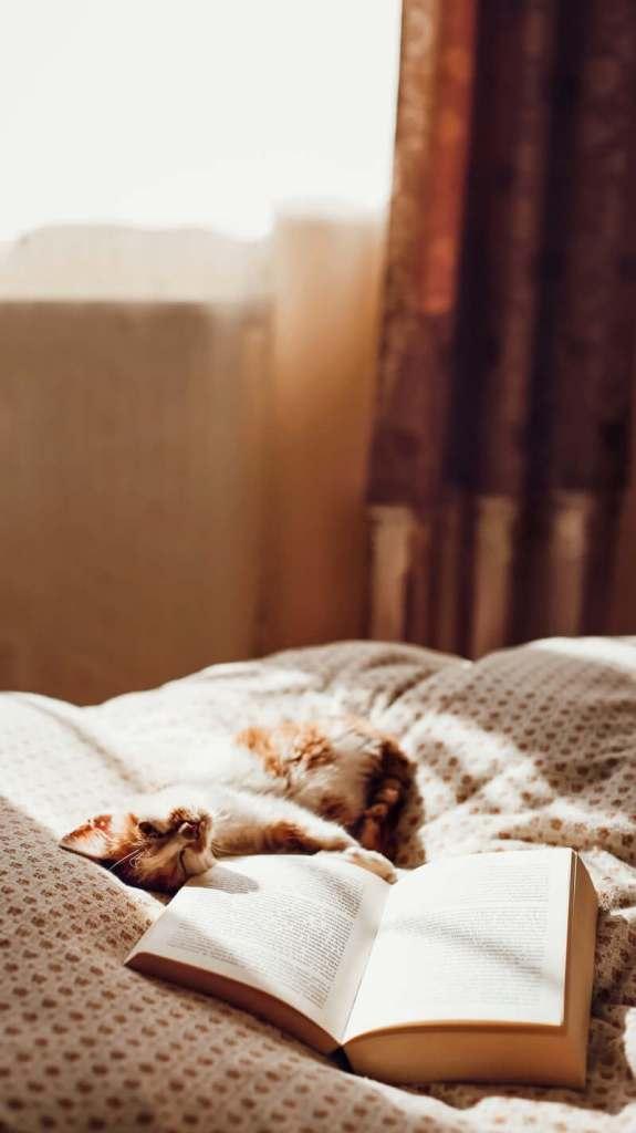 lire au lit pour vivre au ralenti