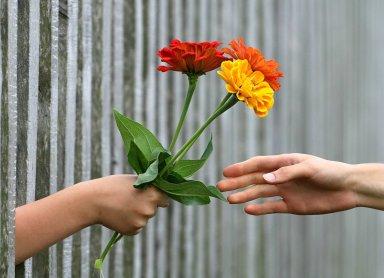 Ces quelques fleurs offertes symbolisent le don d'une mise en relation utile