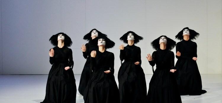 Être danseur, c'est chosir la troupe, le style, la direction artistique d'une tribu professionnelle.