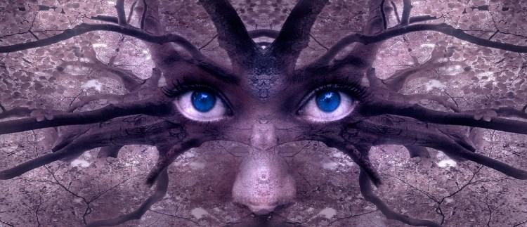 Des yeux dans un arbre symbolise de pouvoir des mots sur la limitation des images