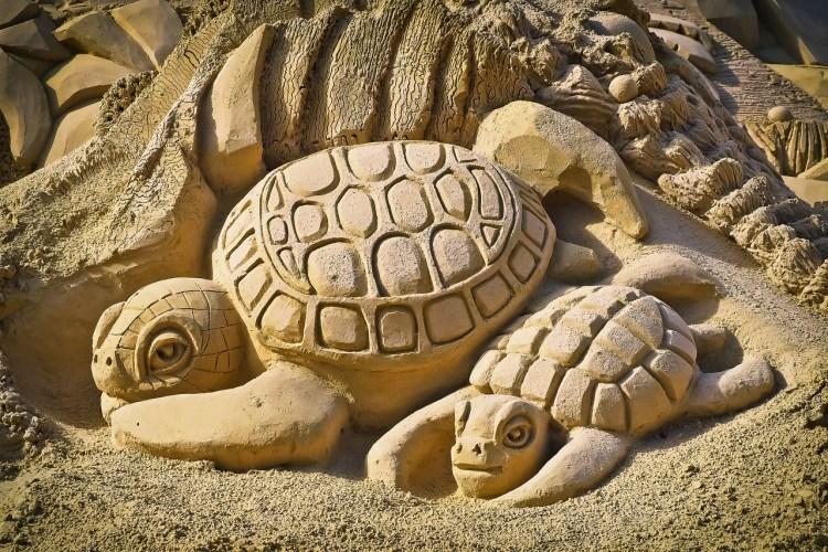 Statue de tortues qui nous rappellent qu'on peut entrer dans sa carapace pour tenter de disparaître et se protéger