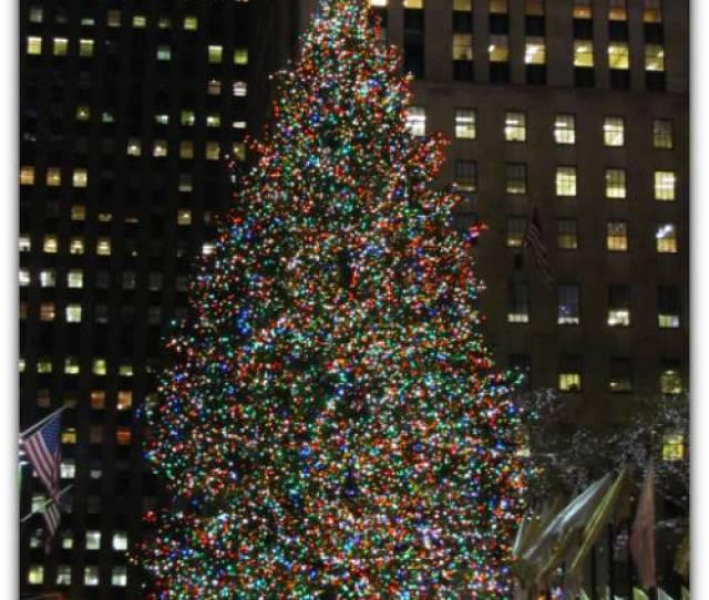 Holiday Season New York Christmas Tree Rockefeller