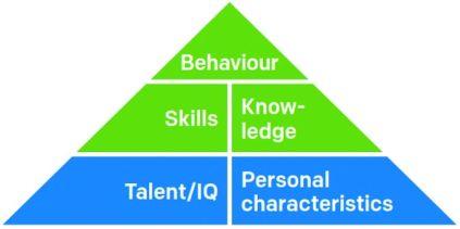 Danica competencies triangle