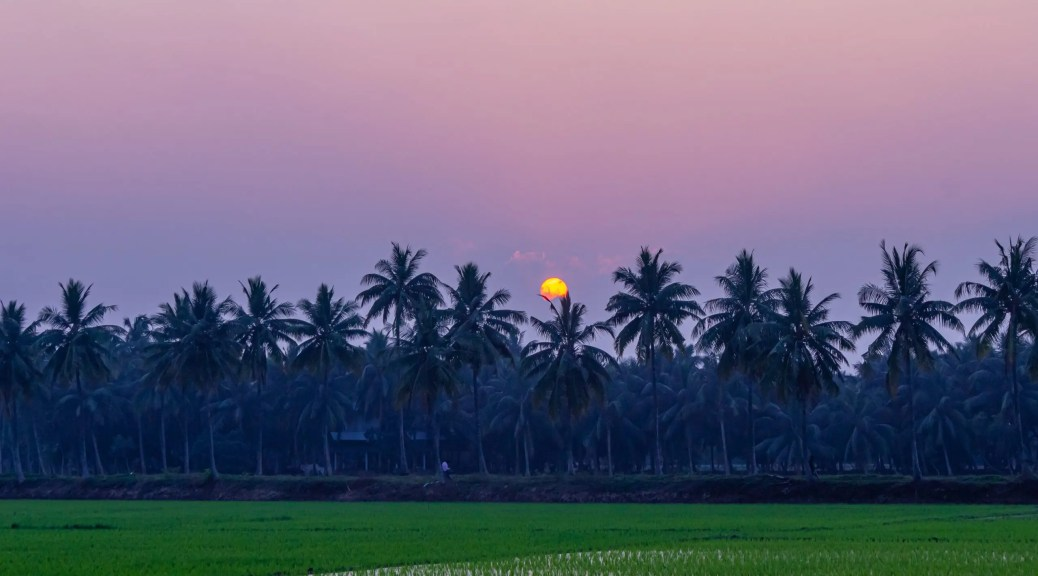 Sunset in Konaseema