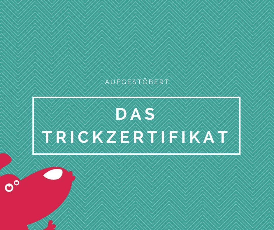 Aufgestöbert: Das Trickzertifikat