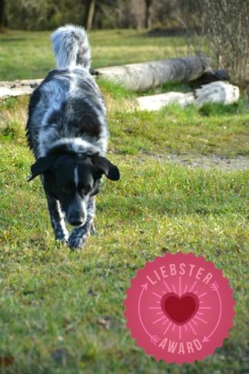 liebster-award-isarhunde