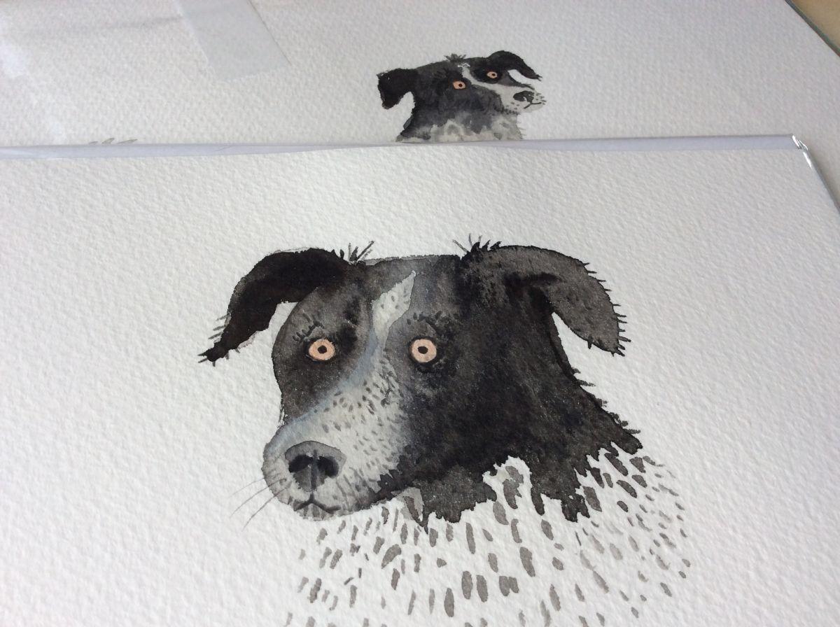 Mika, gezeichnet von Lorna Scobie