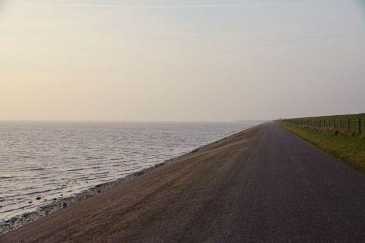 Guten-Morgen-Stimmung auf Texel