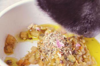 Mika probiert: Gartentopf plus Kräuterheld plus Goldrausch
