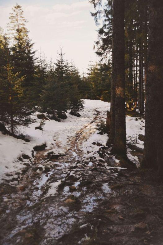 Kleinere Tücken lauerten im 'dunkleren' Teil des Wegs ins Tal.