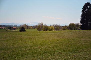 Entlang von Wiesen und Feldern geht es in Richtung Waldrand