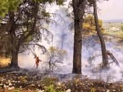 Incendio Vieste