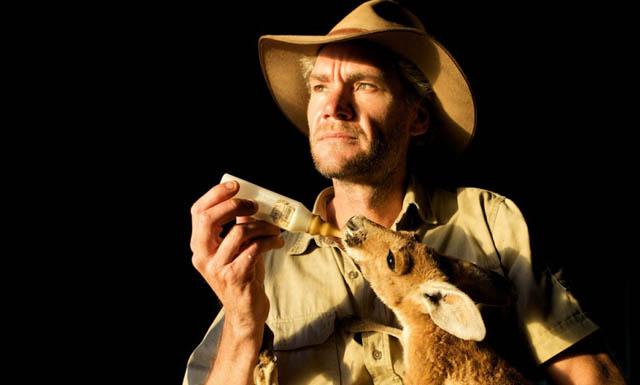 tv_digest_kangaroo-dundee_main