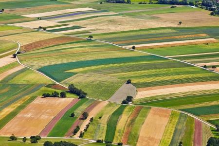 fields shutterstock_215572900