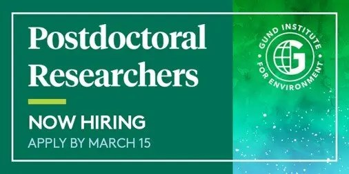 Gund Postdoctoral Researchers