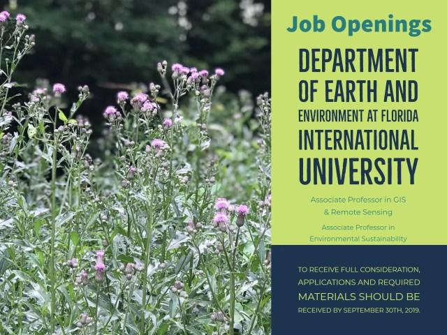 JOB OPENING: DEPARTMENT OF EARTH AND ENVIRONMENT AT FLORIDA INTERNATIONAL UNIVERSITY