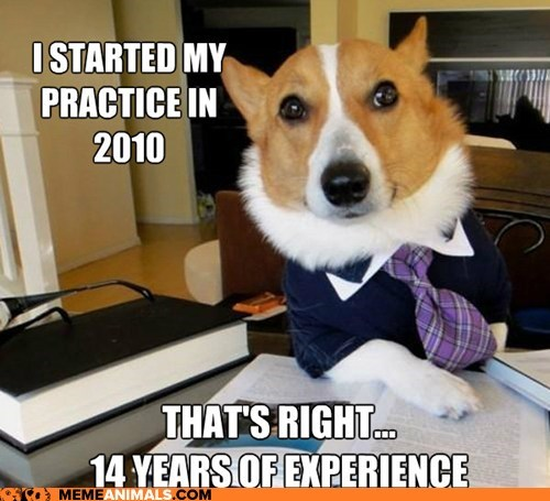 Lawyer Dog- Fixing to Retire Soon