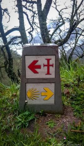 camino lebaniego