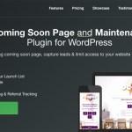 9 migliori plugin di WordPress per i proprietari di nuovi Business