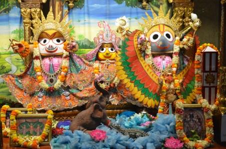 Iskcon_Kolkata_Radha_Govindaji_0005