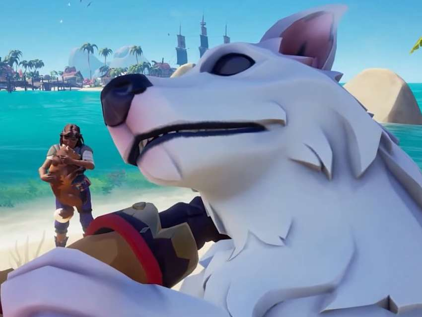 How to unlock dogs in Sea of Thieves