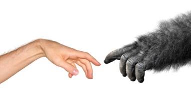Le mensonge de l'évolutionnisme et de l'idéologie du genre