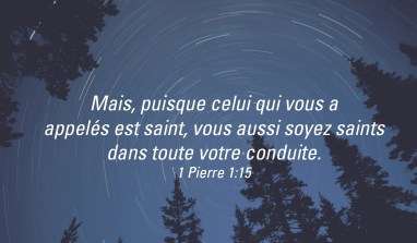Soyez parfaits, comme Dieu ! Homélie pour le 7ème dimanche du Temps Ordinaire (A)