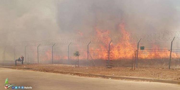 Ilustrasi kebakaran. Foto: PIC