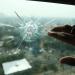Dua Peluru kembali Ditemukan di Gedung DPR 2