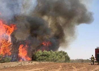 kebakaran lahan israel